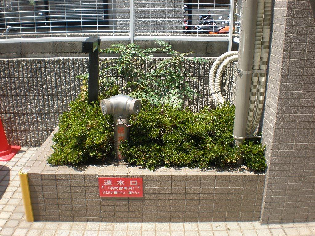 〈植栽〉改修工事で傷んだ植木を・・・ [after]